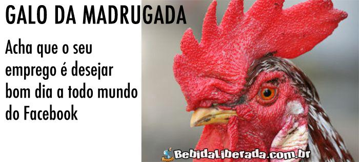 tipos-de-pessoas-no-facebook-GALO-DA-MADRUGADA
